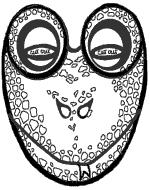 Cermit Máscara
