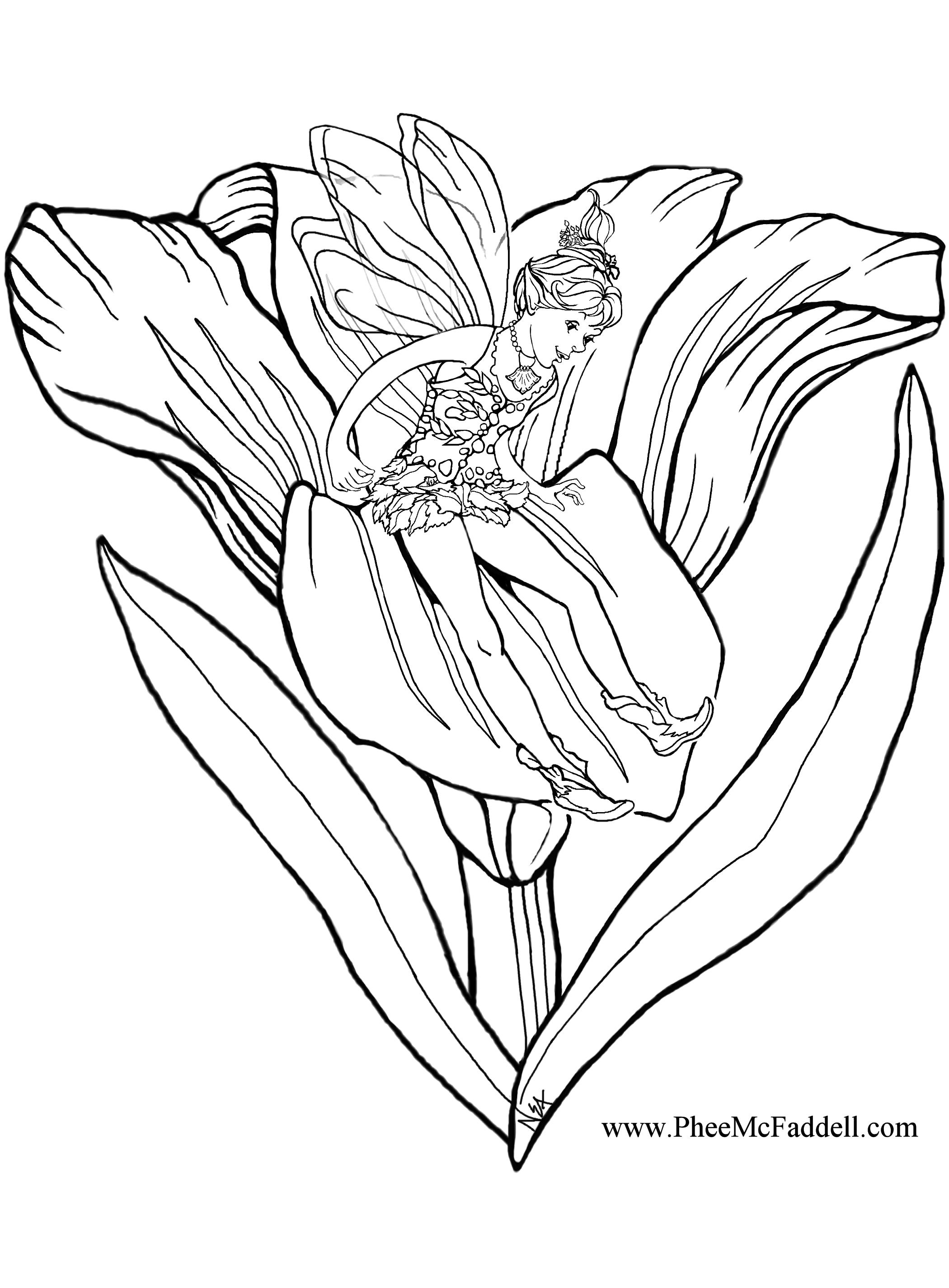 Flower Slide www.pheemcfaddell.com