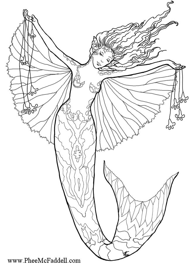 Leaping Mermaid wwwpheemcfaddell