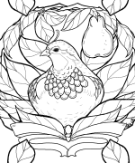 Partridge in a Pear Tree Coloring Page